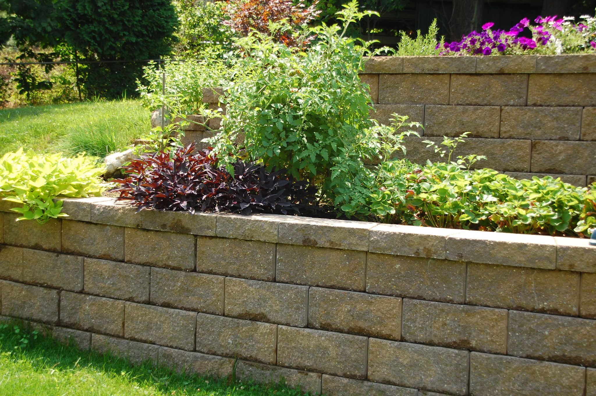 Multi Level Retaining Wall Flower Bed R D Landscape